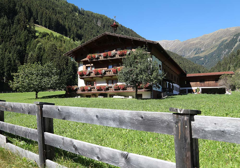 Almhofs Bio-Bauernhof | Farm idyll for the young and old Tyrol
